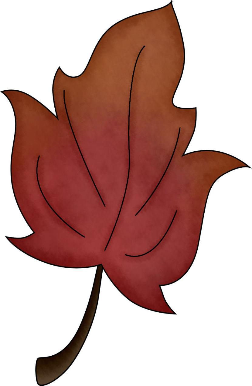 830x1273 Unique Fall Leaf Clipart No Background Free Drawing