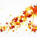 125x125 Best 15 Fall Festival Clipart Free Clip Art Design