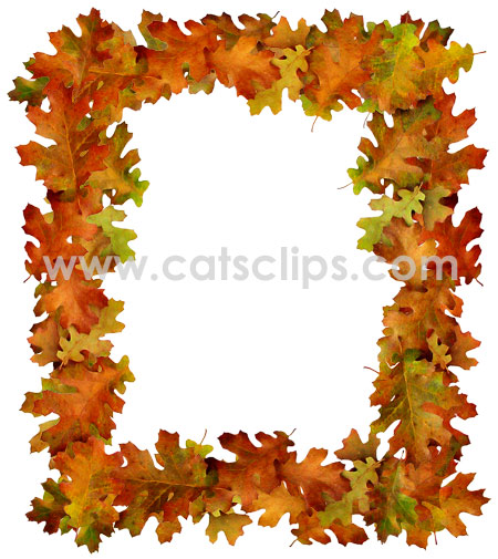 450x505 Colorful Fall Oak Leaves In A Rectangular Border. By Cat's Clips