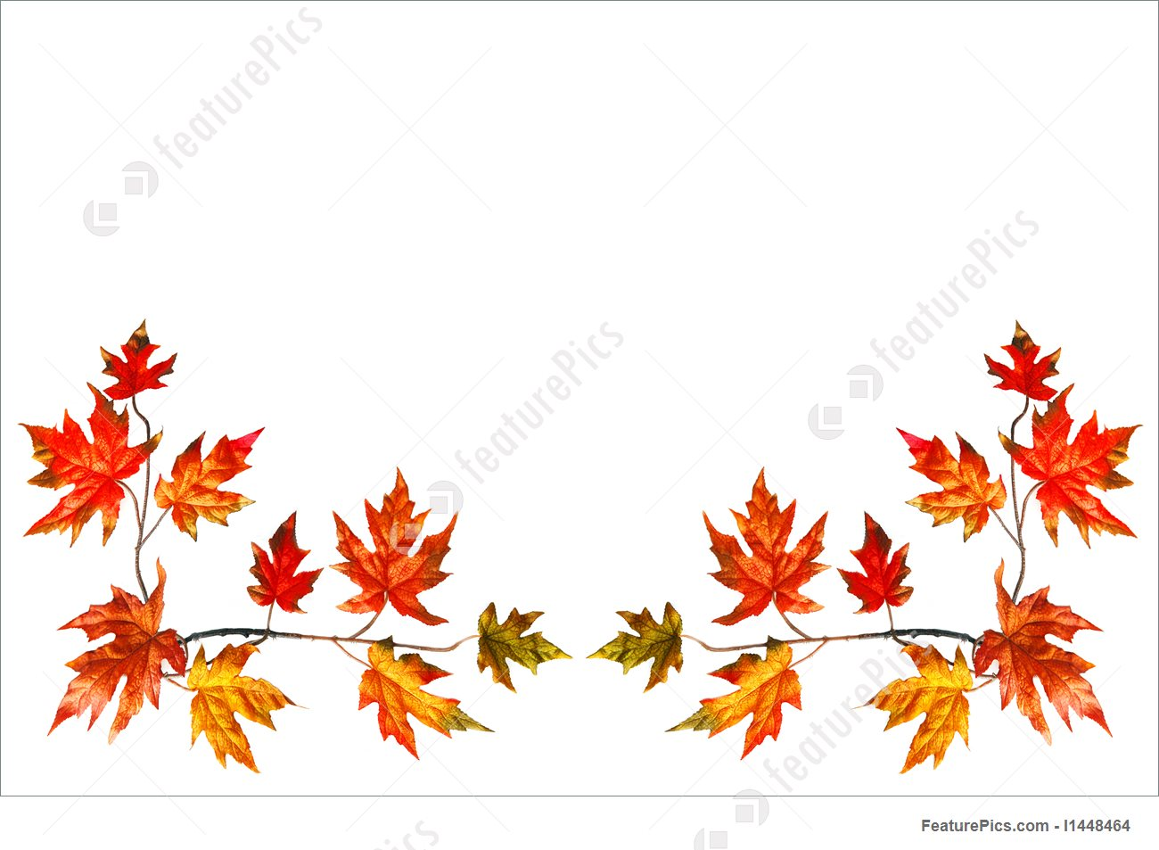 1300x953 Autumn Frame Stock Image I1448464