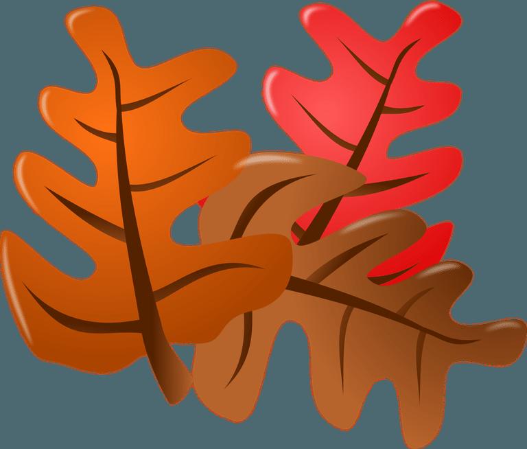 768x654 Free Fall Seasonal Fall Borders Clipart