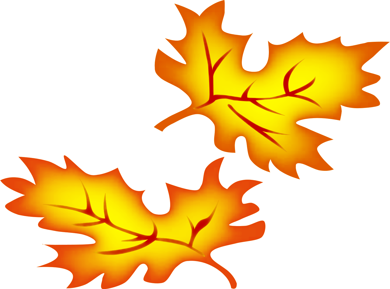 1600x1189 Fall Leaves Transparent Background Clipart