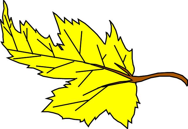 640x439 Falling Leaves Cartoon Clipart