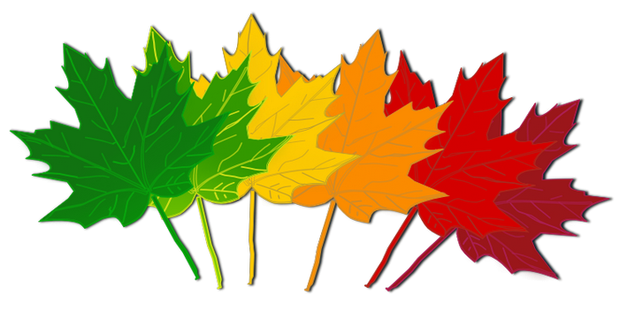 700x352 Fall Clip Art Images Free