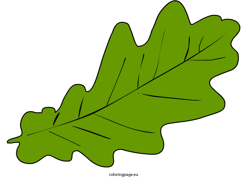 808x595 Top 88 Autumn Leaves Clip Art