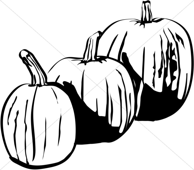 776x681 Three Black And White Pumpkins Harvest Day Clipart