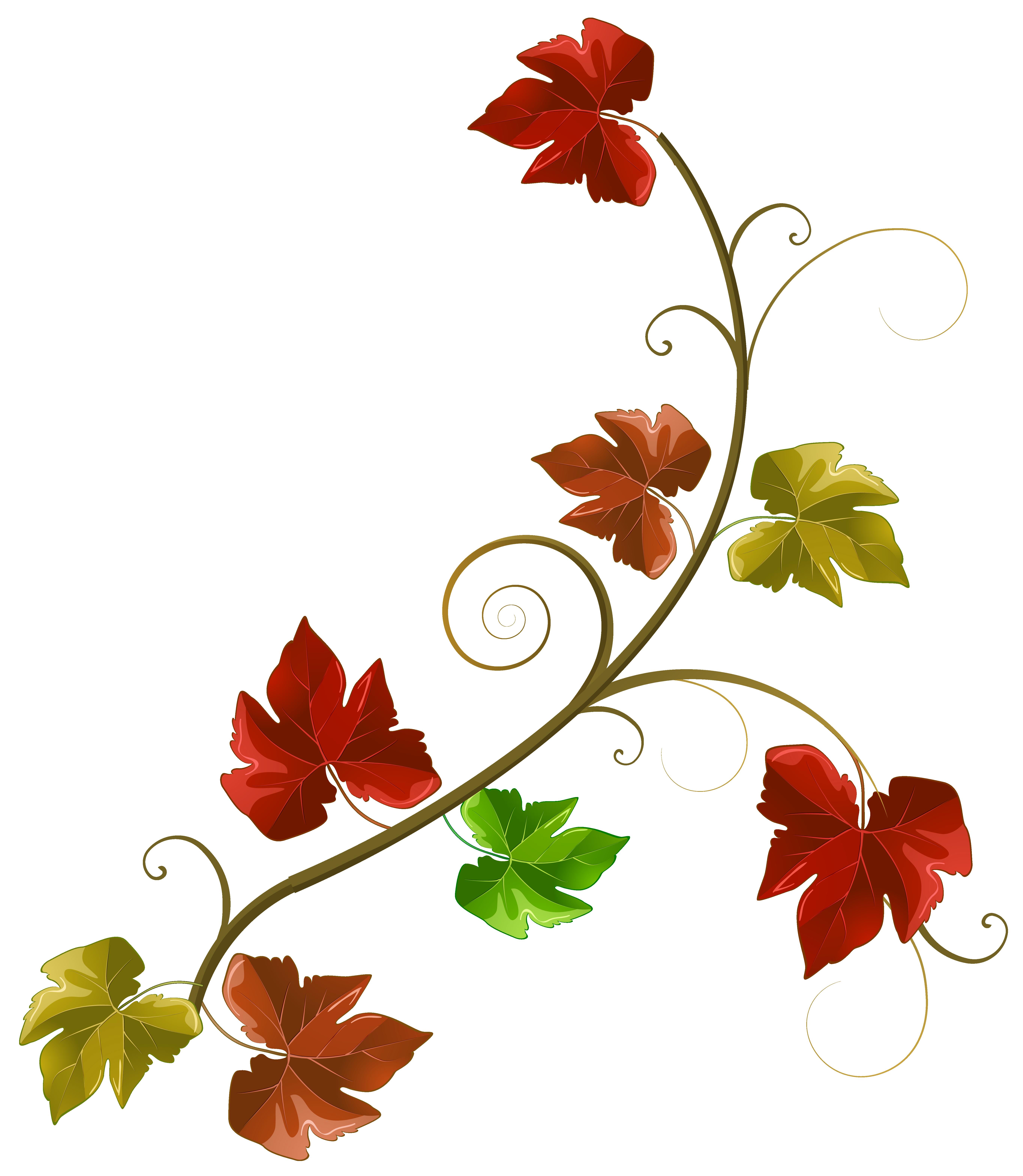 5457x6272 Clipart decoration