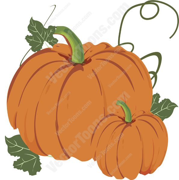 595x600 Graphics For Fall Pumpkin Vine Graphics