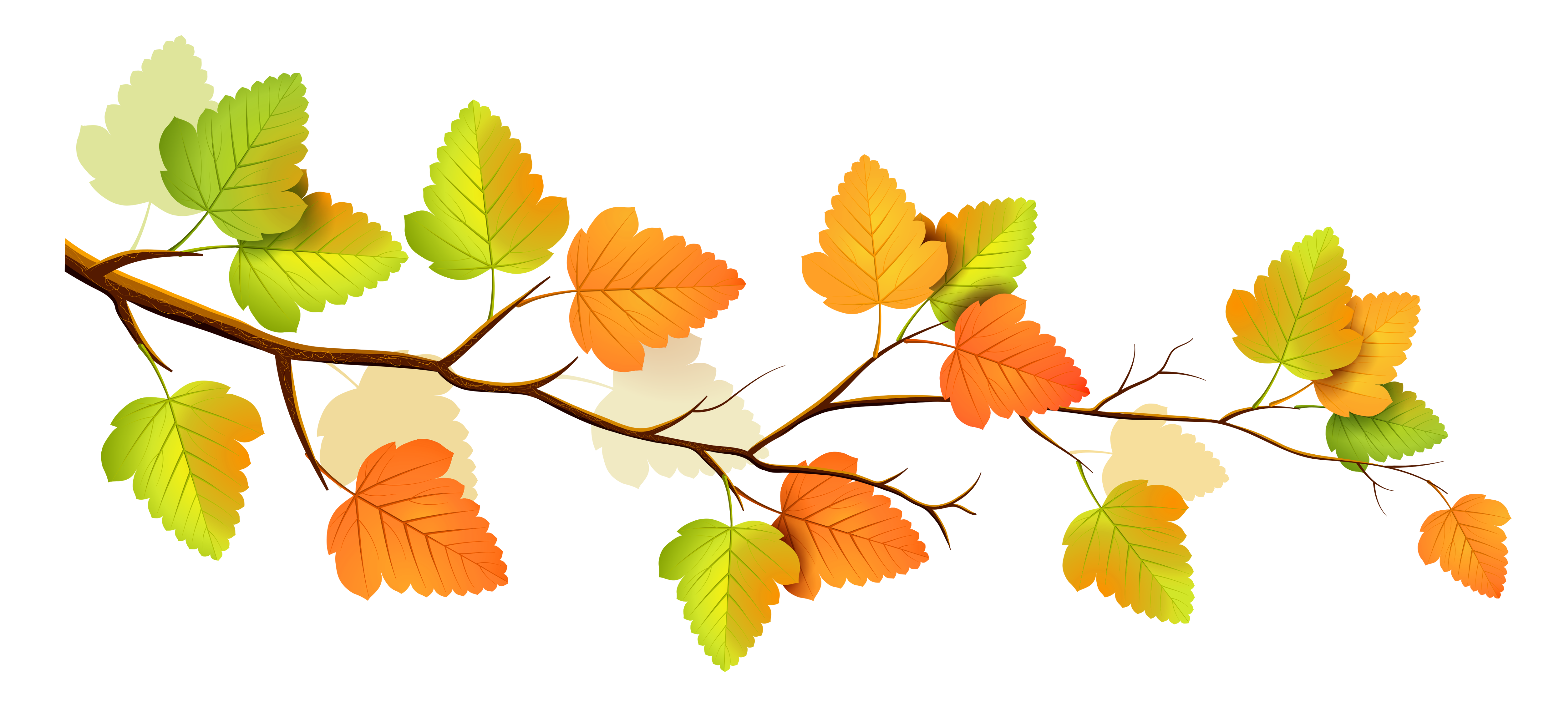 5000x2261 Branch Clipart Fall Branch