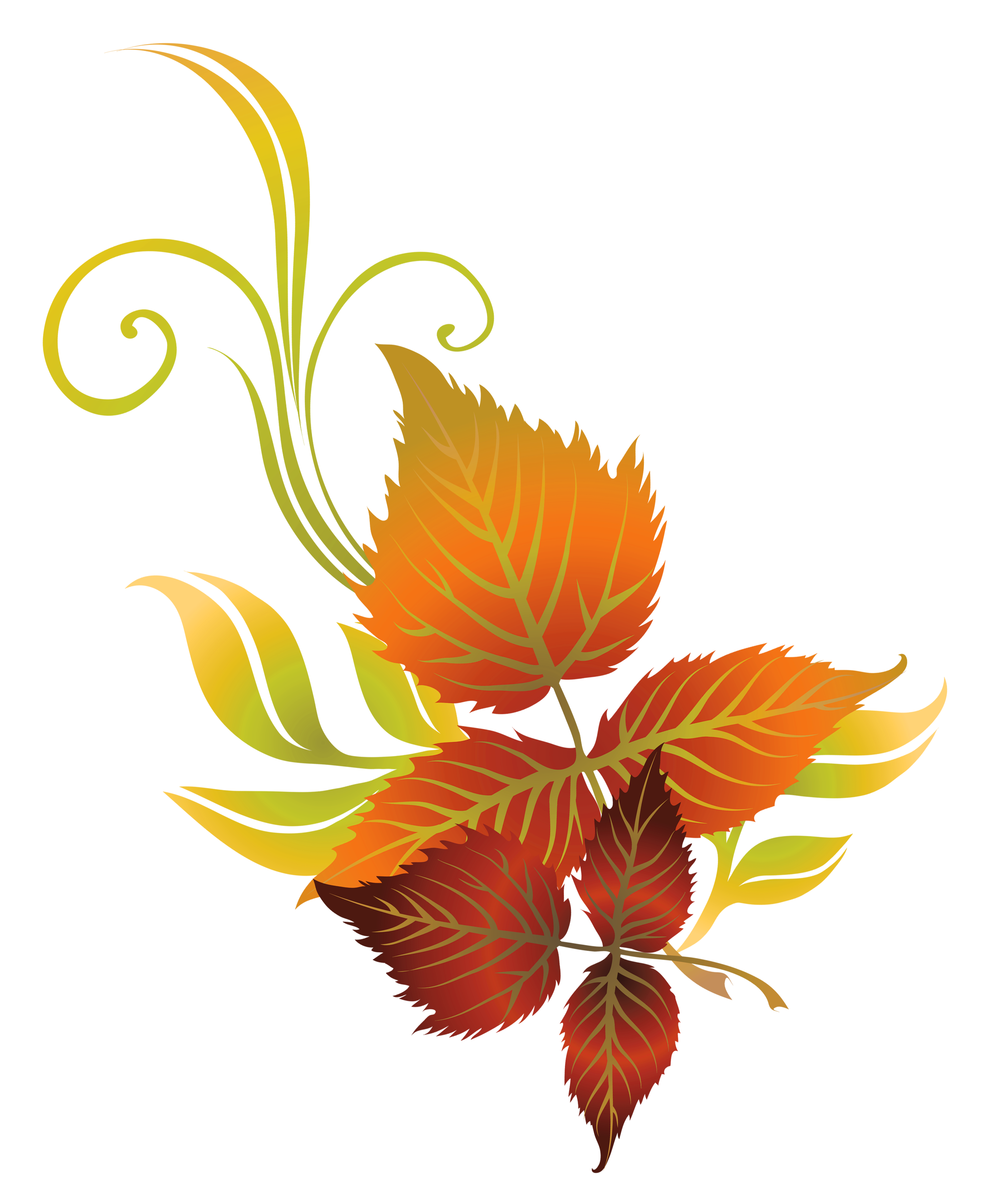 2779x3370 Fall Leaves Deco Png Clipart Pictureu200b Gallery Yopriceville