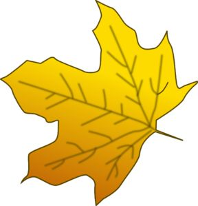 288x299 32 Best Fall Images Autumn Leaf Color, Colouring