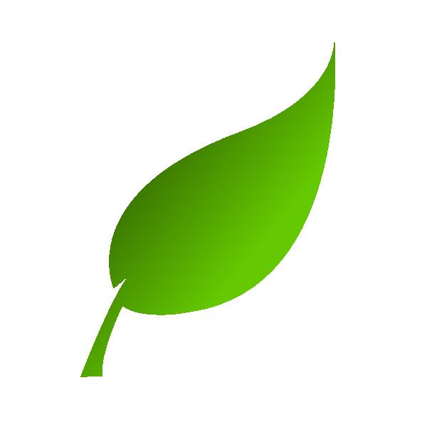 600x600 Leaf Clip Art