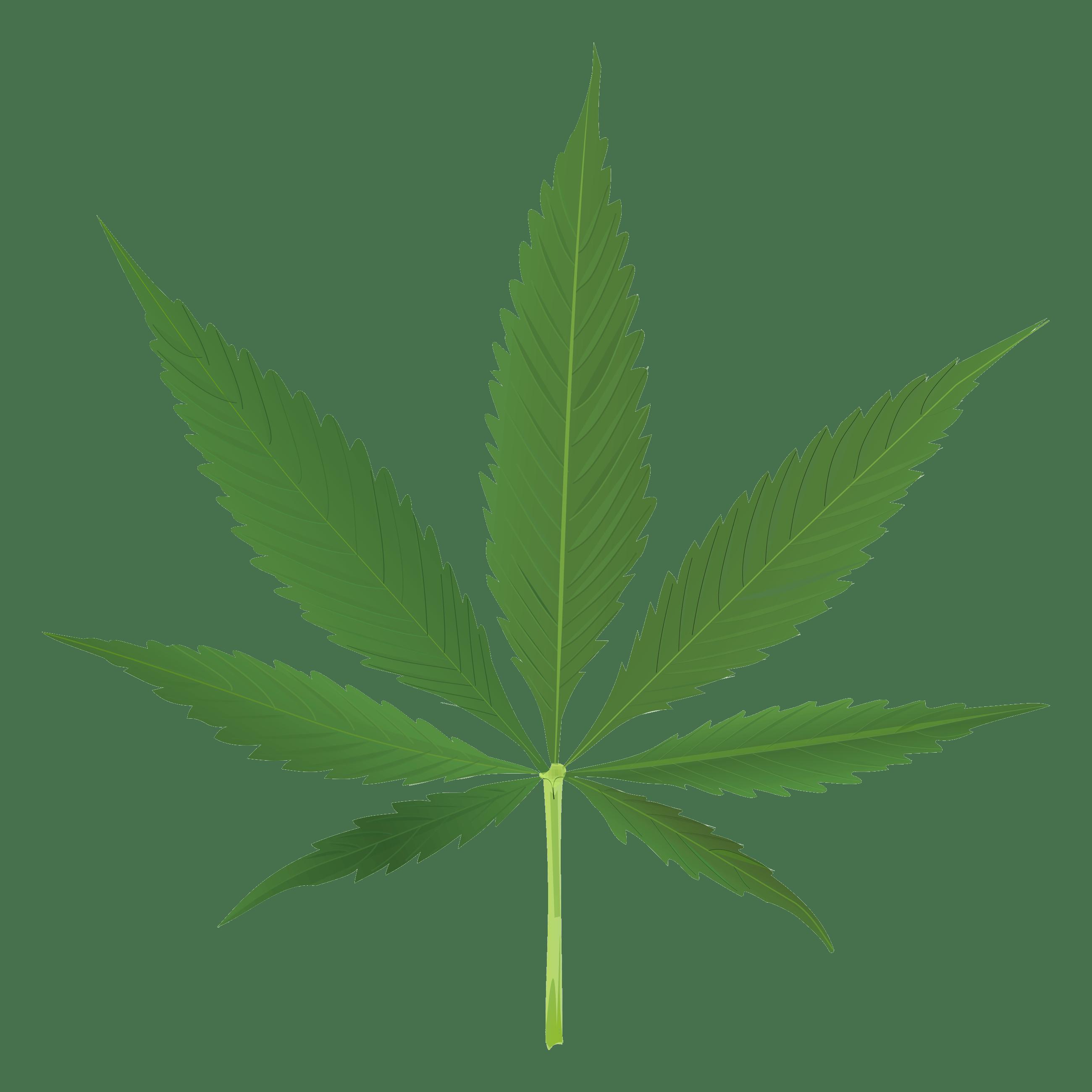 2600x2600 Pot Leaf Clipart No Background