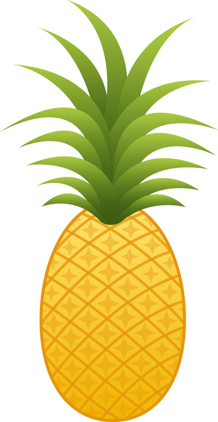 736x1425 Baby Pineapple Clipart