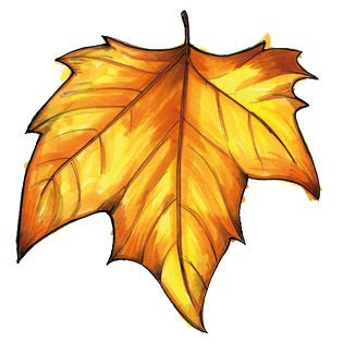 315x315 Fall Leaves Autumn Leaves Images Free Yellow Leaves Pictures Clip