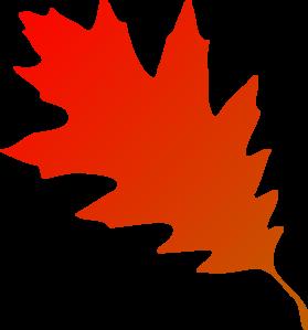 279x299 Maple Leaf Clipart Autmn