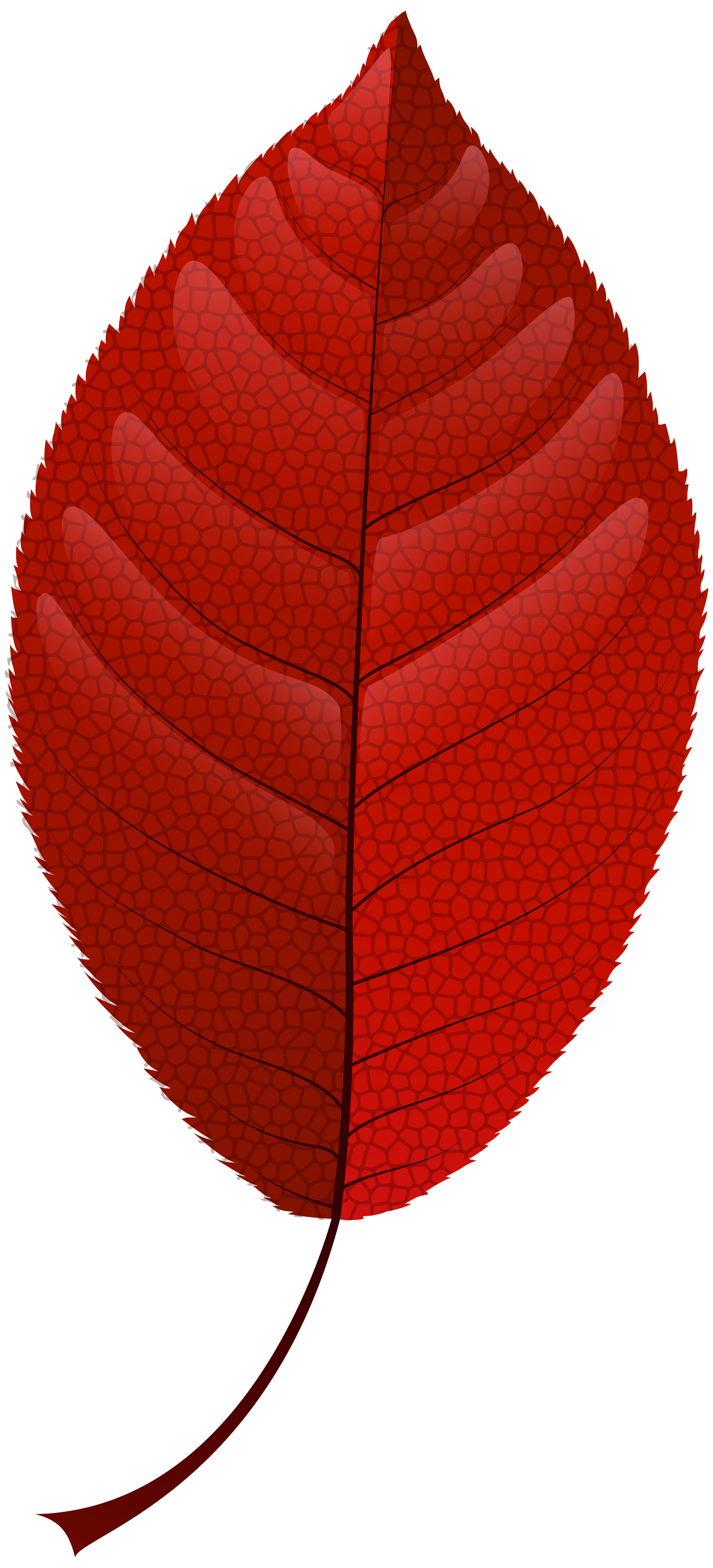 3640x8000 Red Fall Leaf Png Clip Art