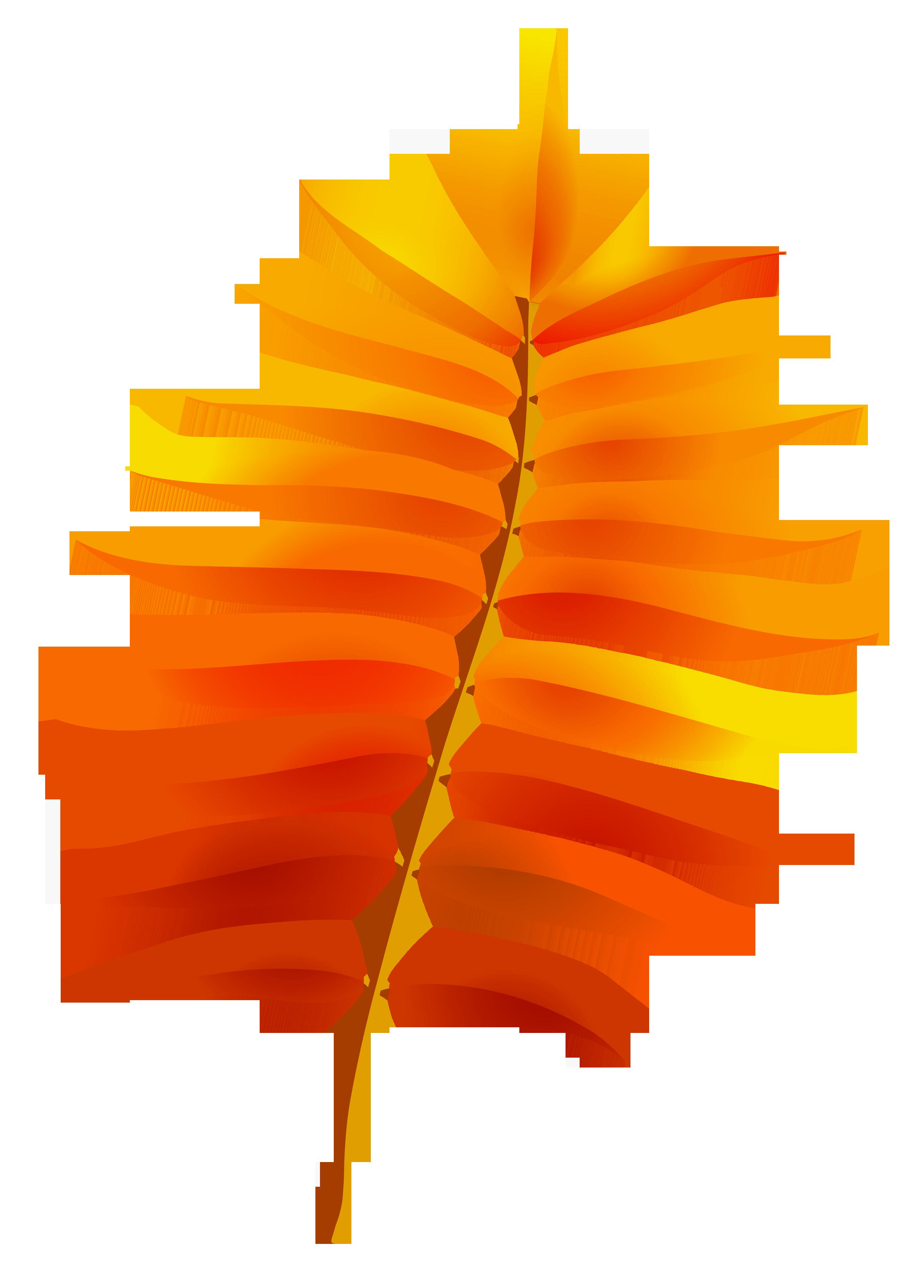 2619x3651 Transparent Fall Leaf Clipart 0