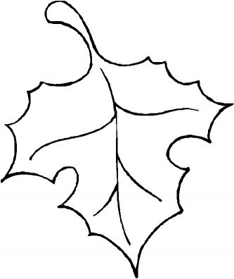333x396 Fall Leaf Template Oak Leaf Outline Vector Leaf Outline Clipart
