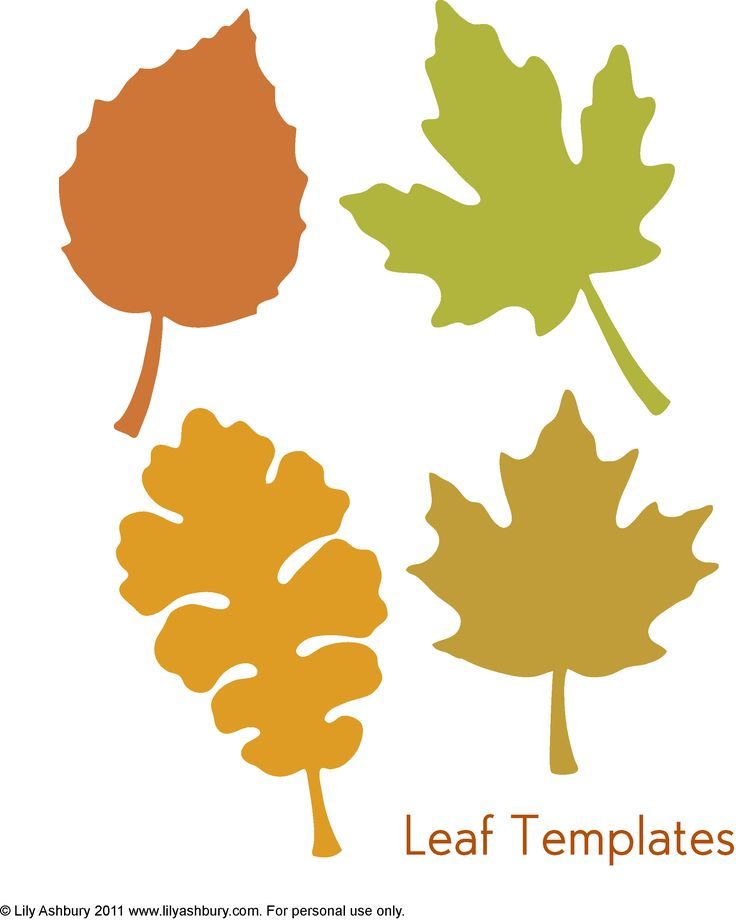Fall Leaf Outline | Free download on ClipArtMag