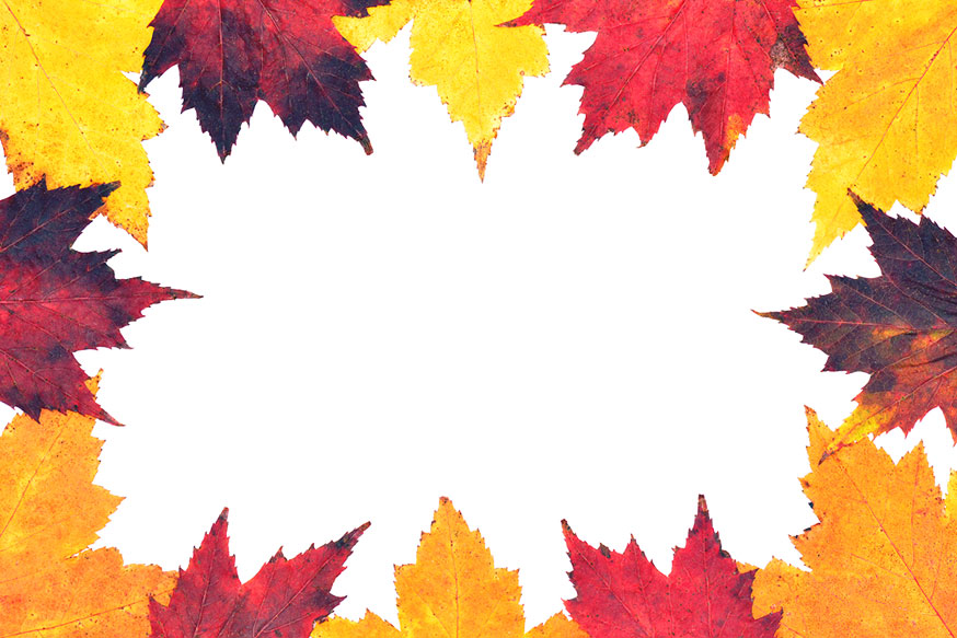 874x583 Explore Border Of Autumn Leaves