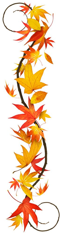 262x997 Falling Clipart Yellow Fall Leaf