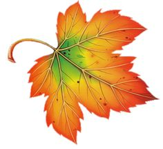 236x215 Top 82 Autumn Leaf Clip Art