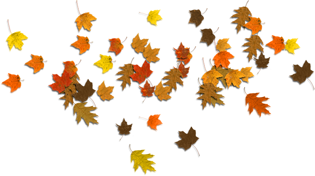 624x350 Fall Leaves Clip Art