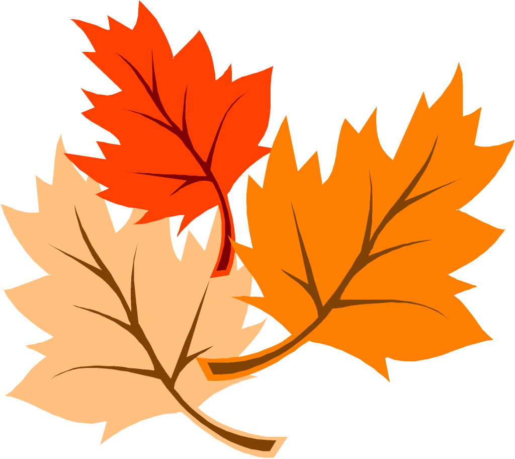 1024x912 Fall Leaves Clipart