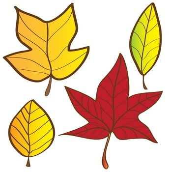 350x350 Leaves Clipart Set