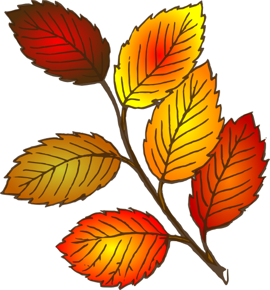Fall Leaves Outline Clipart