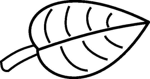 600x318 Leaf Gorda Clip Art