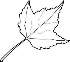 235x209 Leaf Outline 2 Clip Art