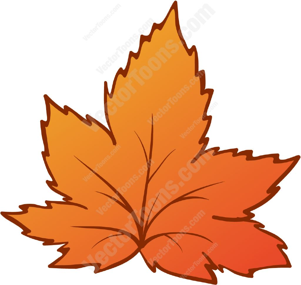 1024x969 Orange Autumn Leaf Cartoon Clipart