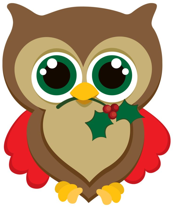 736x885 Christmas Owl Images On Owl Clip Art