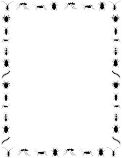 250x324 Ant Border Clip Art, Page Border, And Vector Graphics