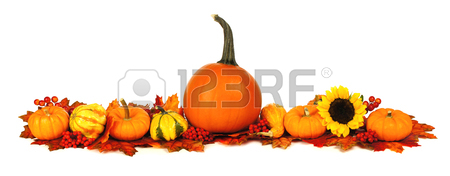 450x176 Long Autumn Border With Pumpkins, Leaves And Flowers Over A White