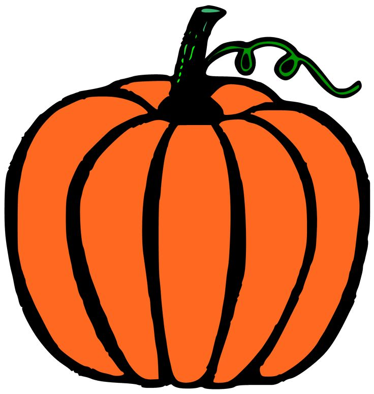 736x775 Squash Clipart Little Pumpkin