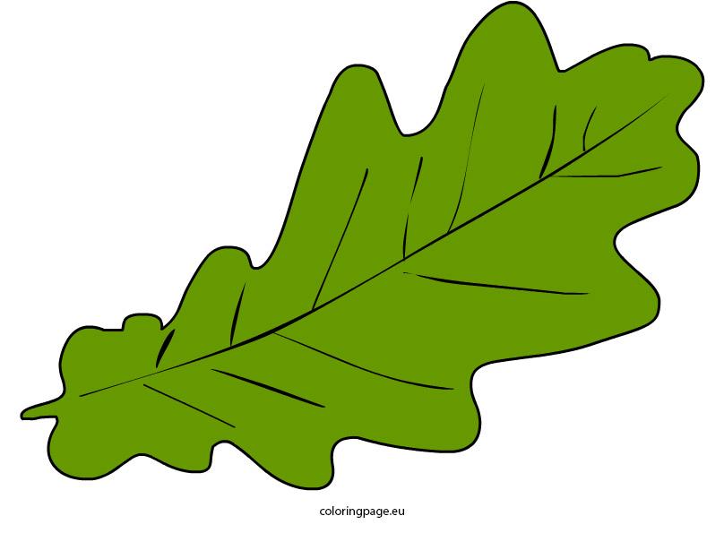 808x595 Top 82 Autumn Leaf Clip Art