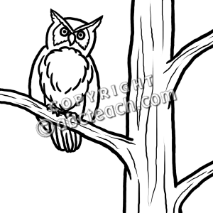 300x300 Fall Owl Black And White Clipart