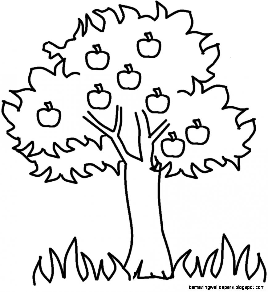 870x947 Fall Tree Clip Art Black And White Amazing Wallpapers