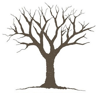 347x320 Mormon Share } Tree Bare Fall Trees, White Image And Clip Art
