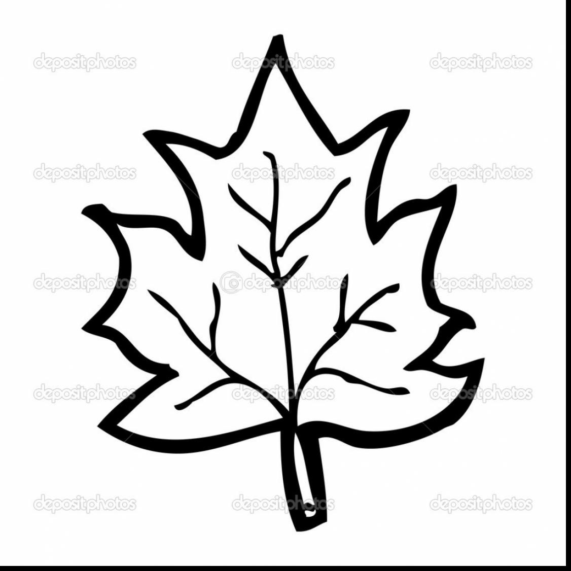 1126x1126 Terrific Rowan Tree Leaves Clip Art With Leaf Coloring Pages