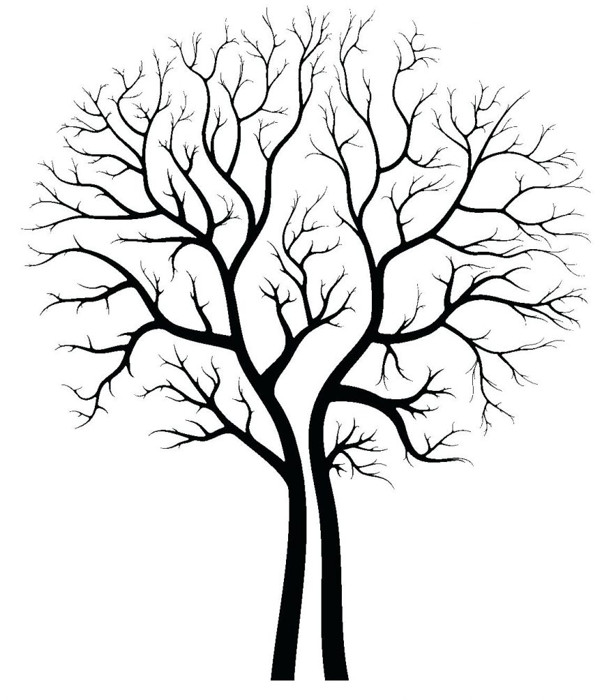 863x1003 Clip Art Family Tree Outline Library Free Images Autumn Printable