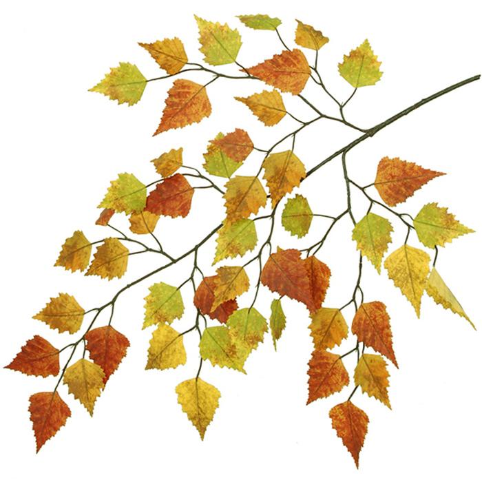 700x700 Fall Birch Tree Clip Art Cliparts