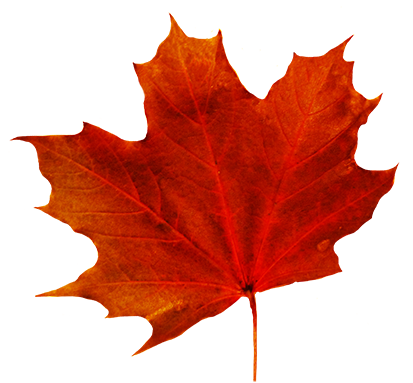 413x383 Autumn Leaves Clip Art