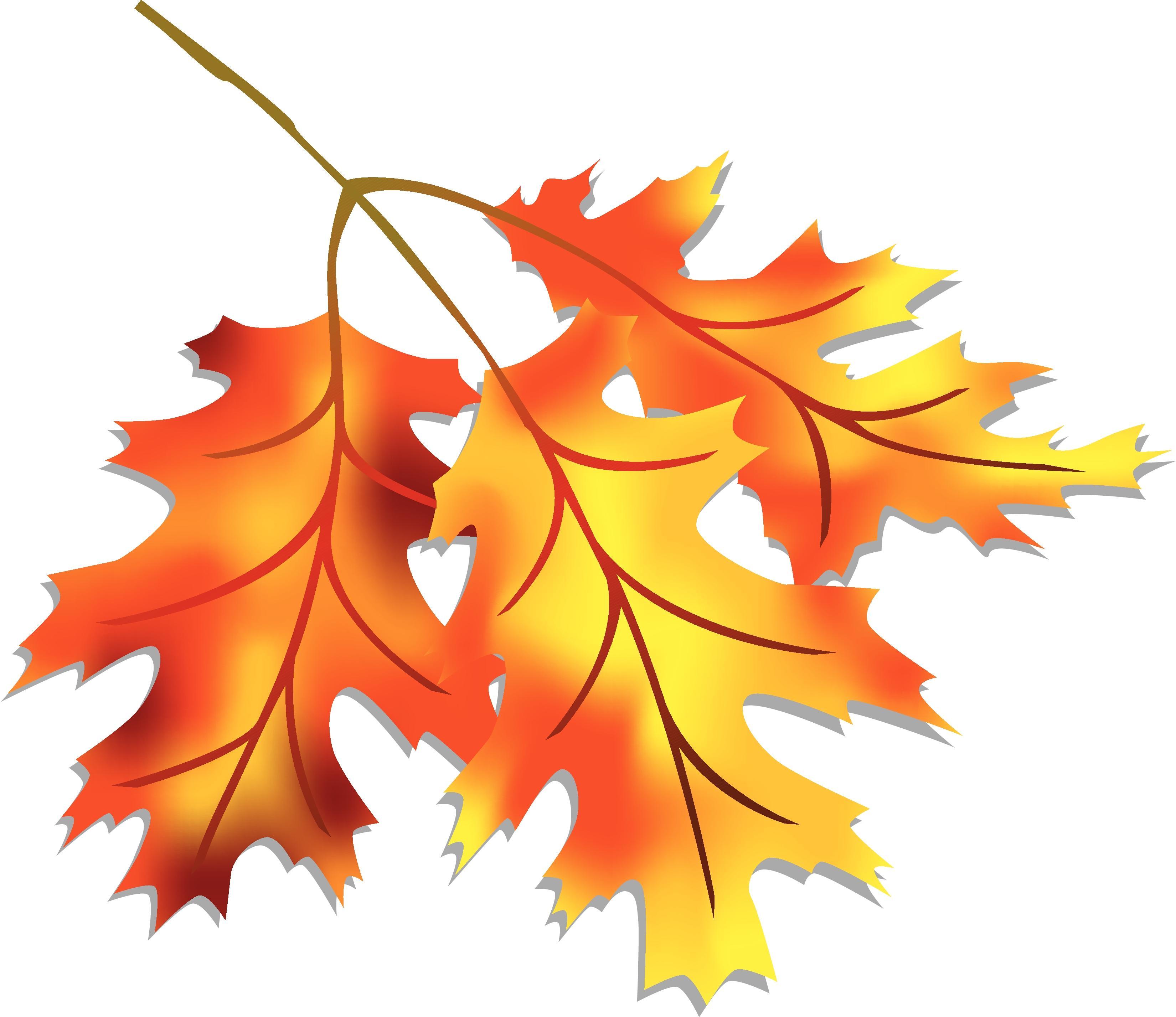 3300x2854 Clip Art Fall Leaves