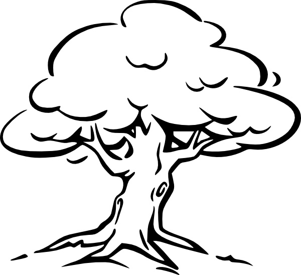 600x548 Tree Outline Clip Art Free Vector In Open Office Drawing Svg