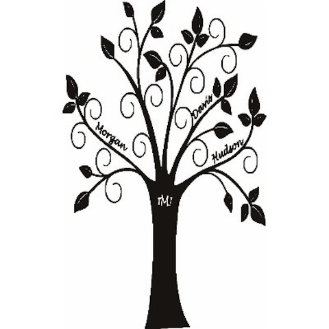 480x480 Family Tree Clipart Black And White Collection
