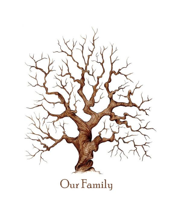 Family Reunion Tree Images